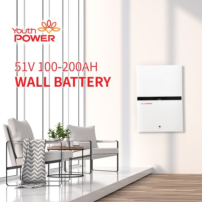 YOUTHPOWER NEW VERSION 51.2V WALL BATTERY 5-10KWH